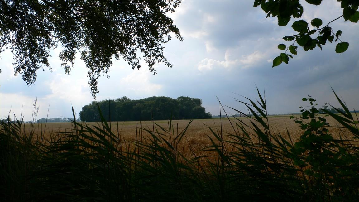 Nederland 2011 Groningen Hoogeland