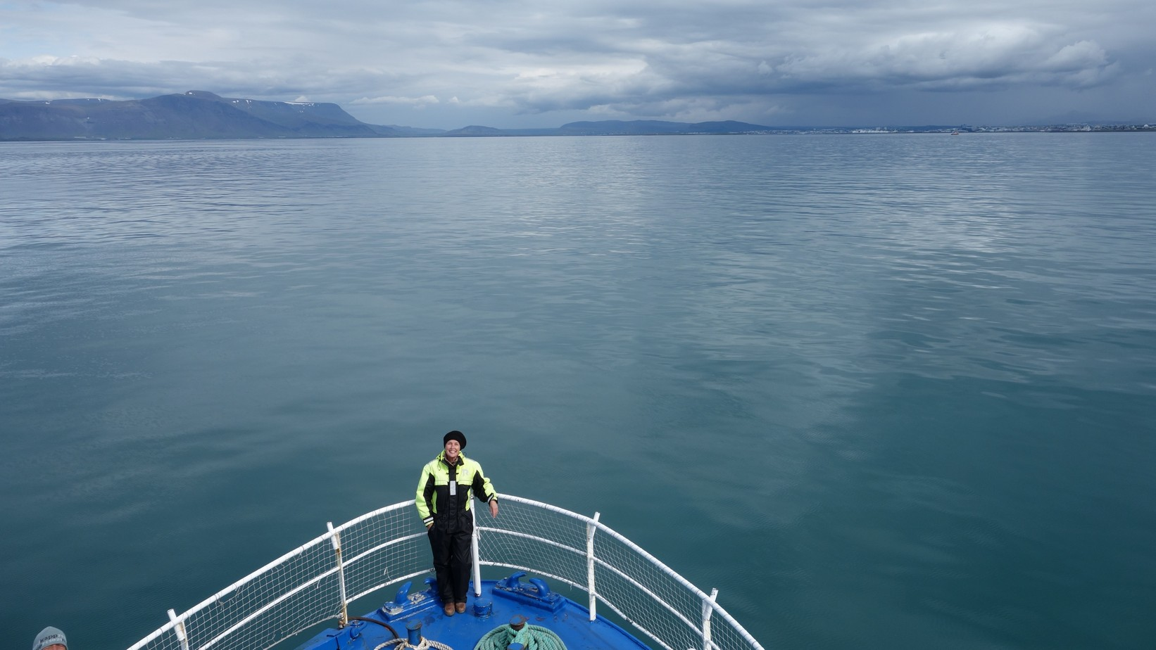 IJsland 2015 Whalespotting